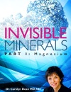 INVISIBLEMINERALS_coverdraft